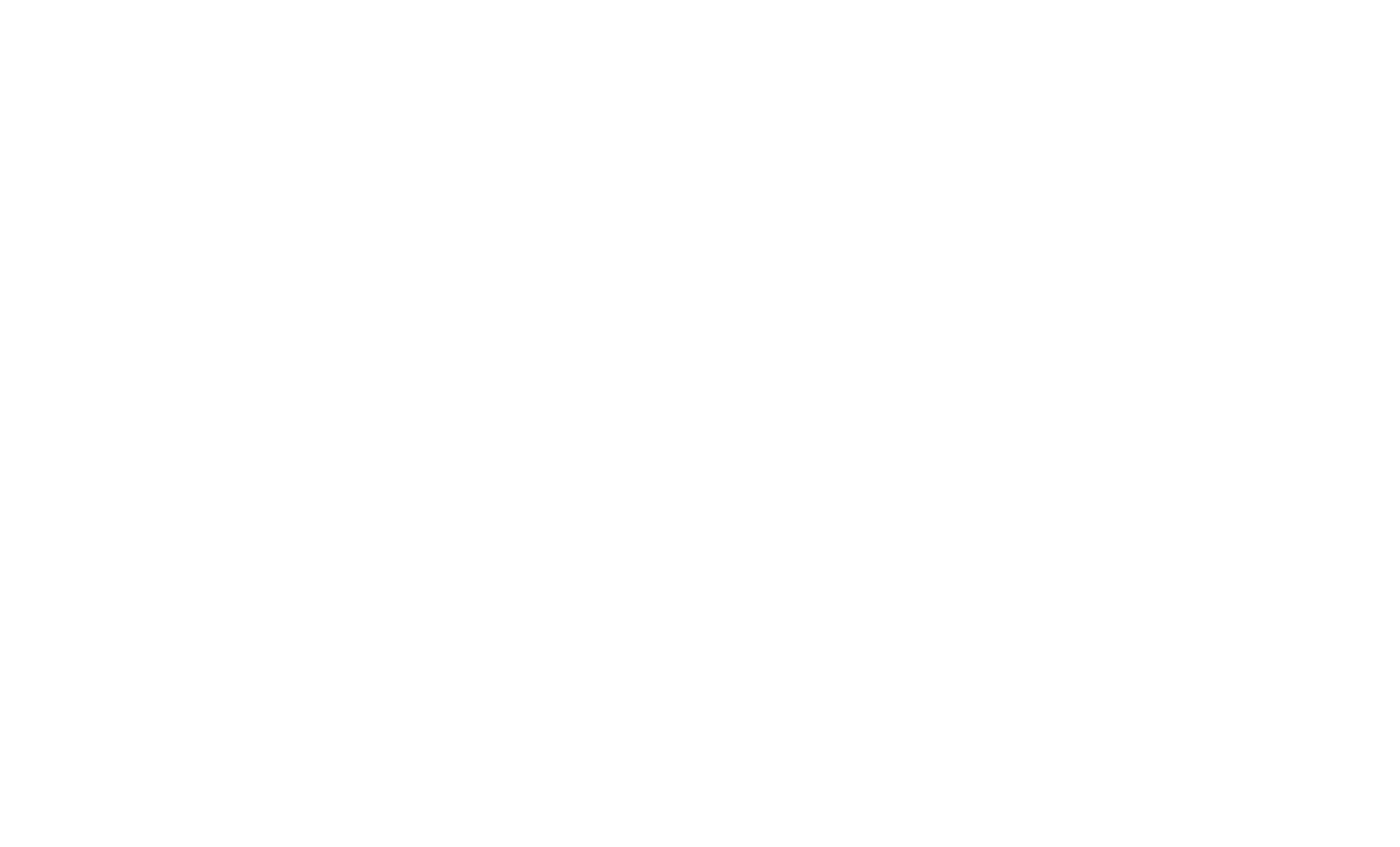 melticolor logo site internet